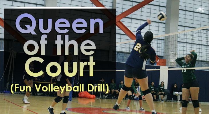 queen-of-the-court